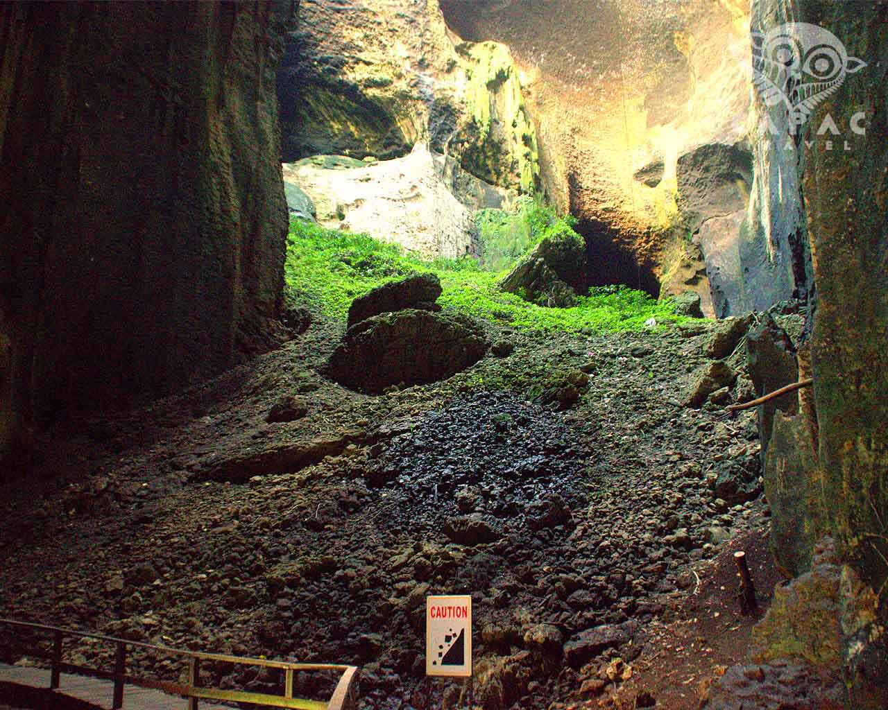 gomantong caves
